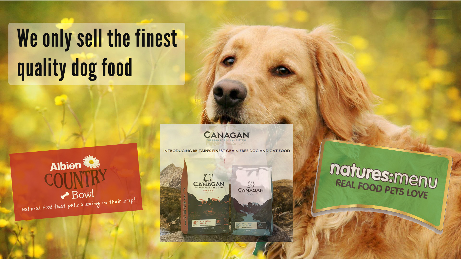 Canagan Dog Food Pets At Home