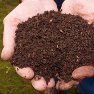 Buy-Garden-compost