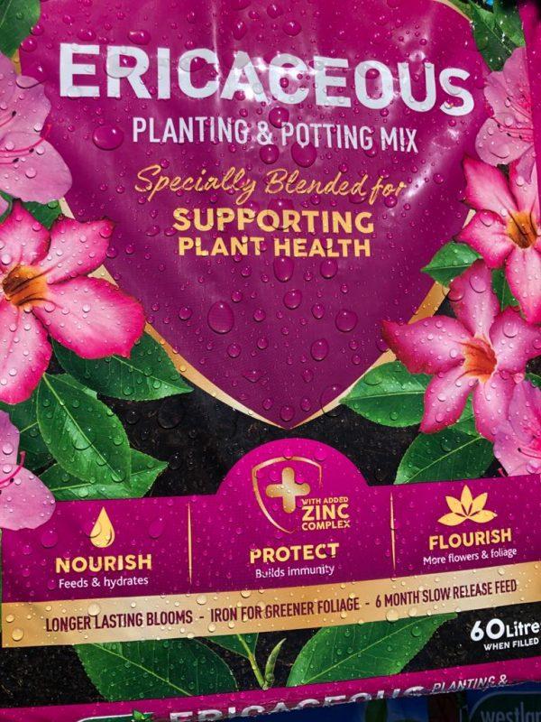 ericaceous planting potting mix